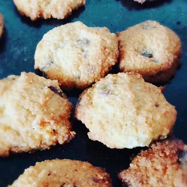 Low carb choc chip bites recipe